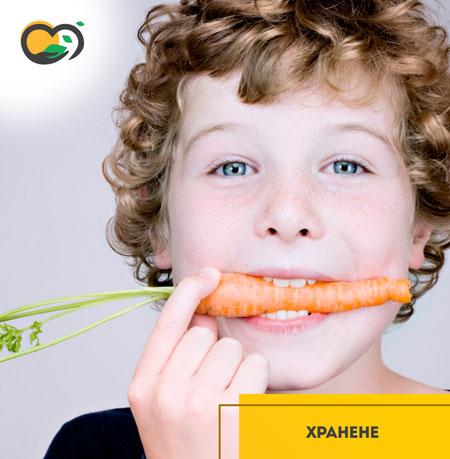 Как да осигурим здравословна храна за детето си в детската градина?